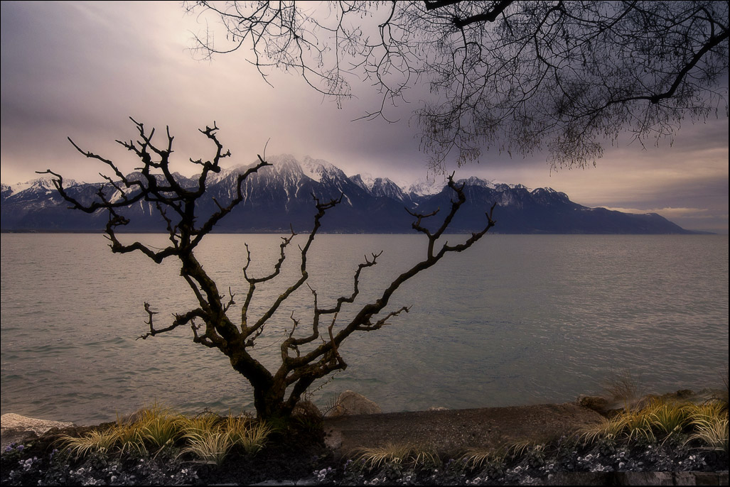 http://s1.hostingkartinok.com/uploads/images/2012/01/5cbd5129d3ec30cfa50dbcfb9e423d18.jpg