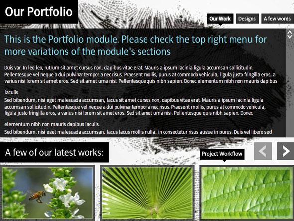 Oxylusflash - Fluxglide Pro Creative Multi Media Portfolio AS2 - Rip