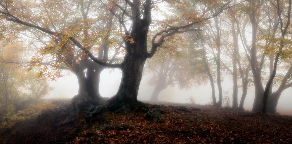 http://s1.hostingkartinok.com/uploads/images/2012/01/e9afc2acb9c407b7fa1053909eae3c71.jpg