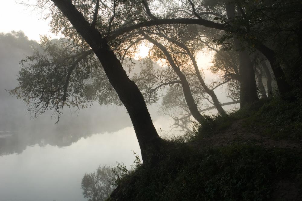http://s1.hostingkartinok.com/uploads/images/2012/03/3afeacc603b7f4af3908259581fe877c.jpeg