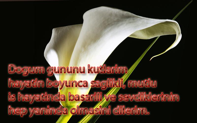 Поздравления с днем рождение любимому на турецком 632