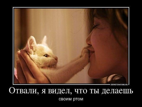 http://s1.hostingkartinok.com/uploads/images/2012/10/03a70273d542935479a46a5e0ad1874a.jpg