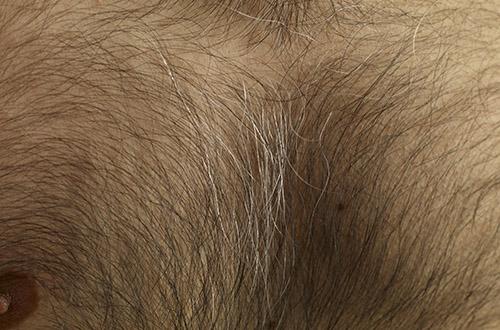 Модная длина волос в интимных местах