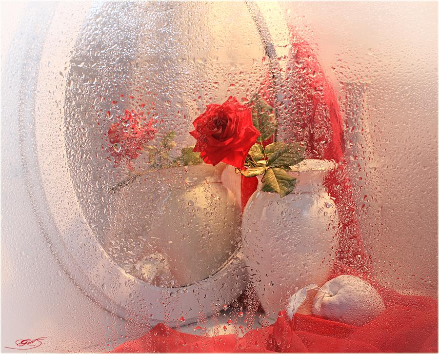 http://s1.hostingkartinok.com/uploads/images/2012/12/eee5d8e5c4dbe6d658fb266b4d54f2eb.jpg