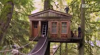 ���� �� �������� /  Animal Planet: Treehouse Masters [2 ����� 1-10 �����] (2013-2014) HDTVRip