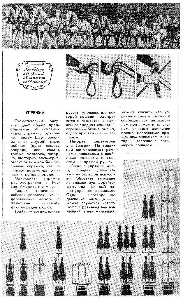 Виды упряжек (Система Отто фон Ахенбах (1861 – 1936)) 93f34aa5f50565e55938ff0b214c22f0