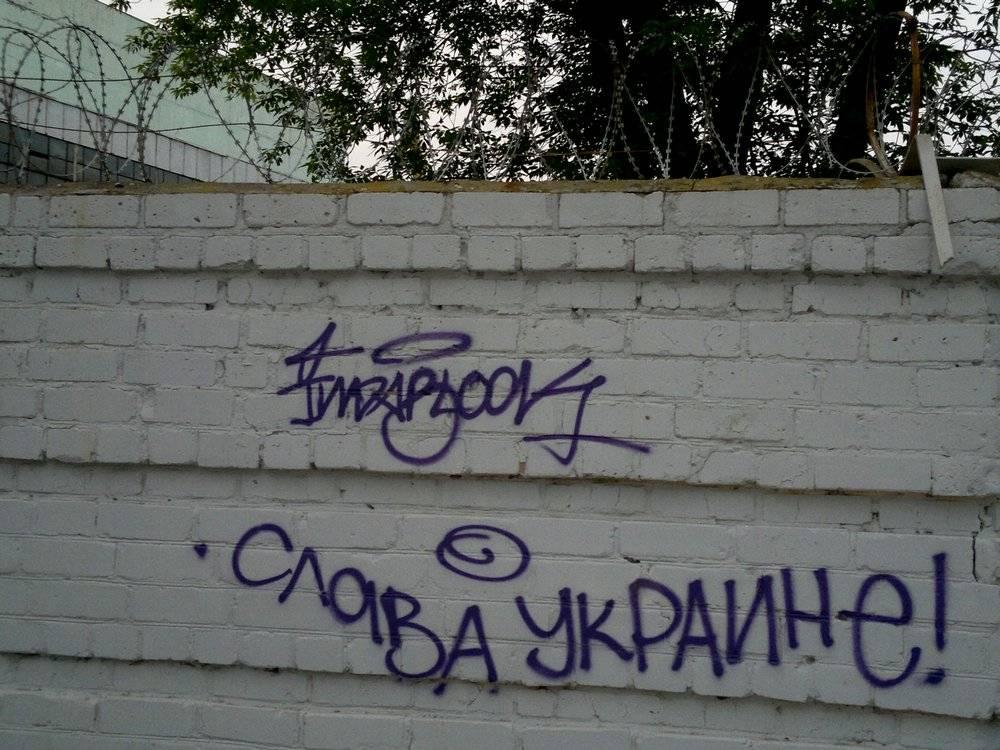 Украина могла  стать «Великим Шелковым путем»  XXI века, а превратилась в концлагерь