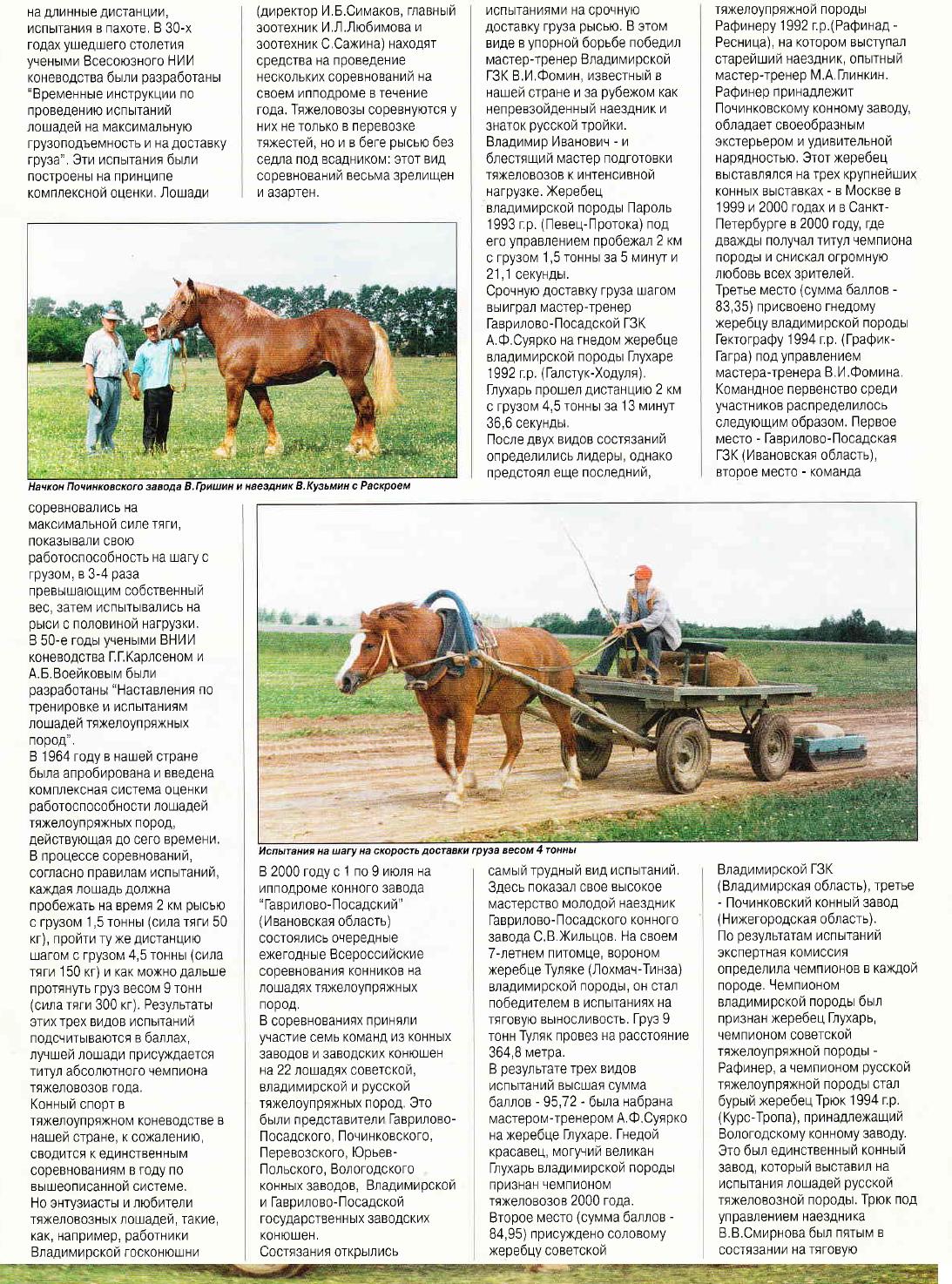 Богатырские кони. Статья из журнала КМ 1-2001