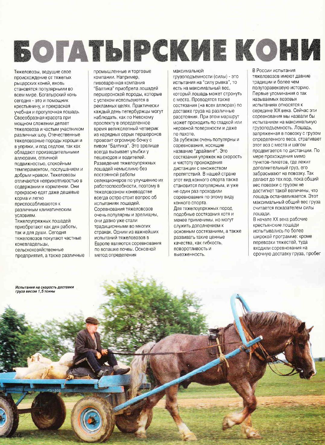 Богатырские кони. Статья из журнала КМ 1-2001 A7308e8bff636499fdb01b3fbfcc3e46