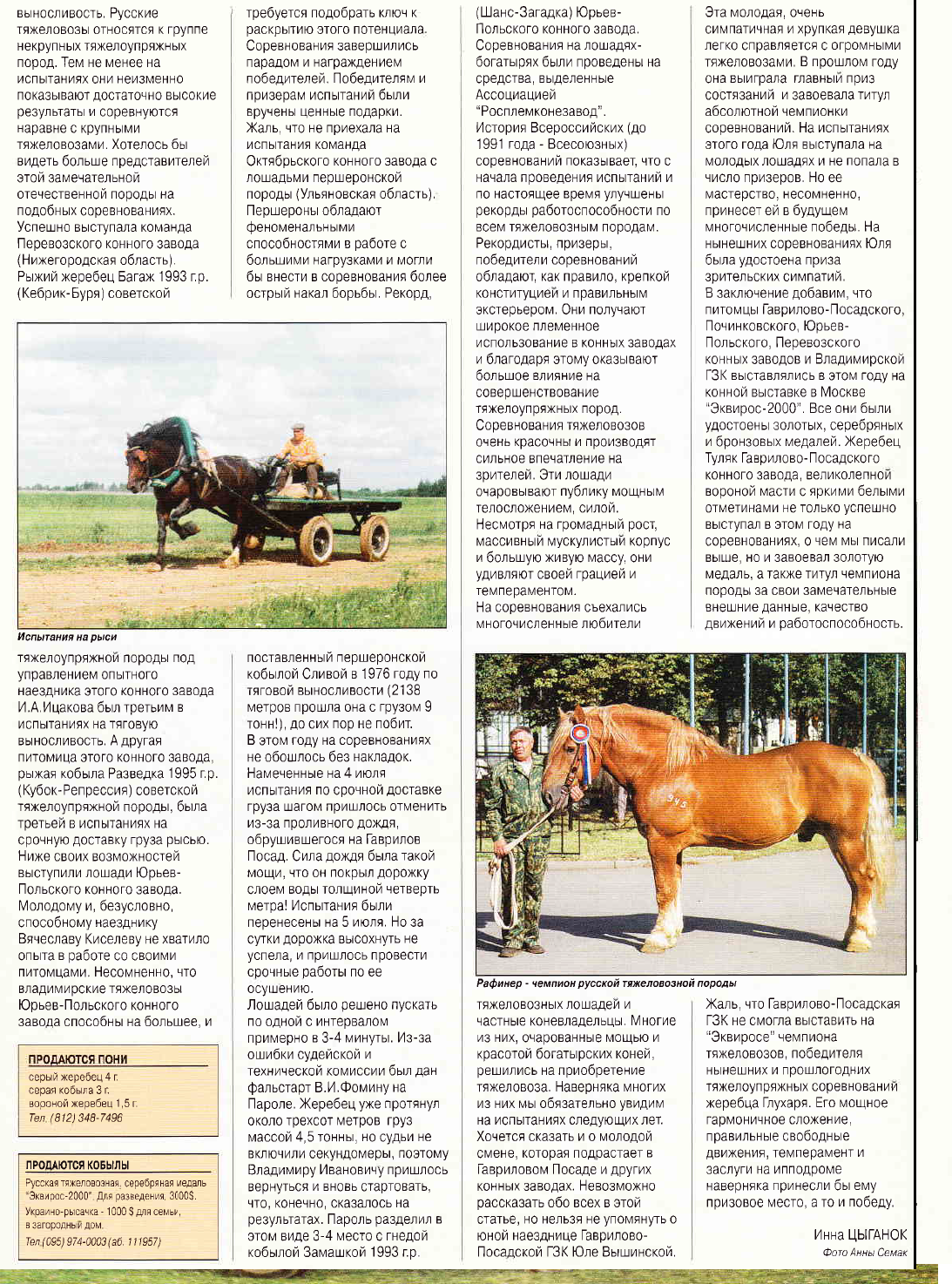 Богатырские кони. Статья из журнала КМ 1-2001 F18e13fbddec6b2315b752fcdacdb86a