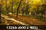 Осенний фотоконкурс 6d2a16952e2919f90e9a902398683119