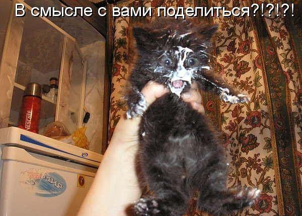 http://s1.hostingkartinok.com/uploads/images/2012/10/7b4182a54c41d02a5d71c799060423c9.jpg