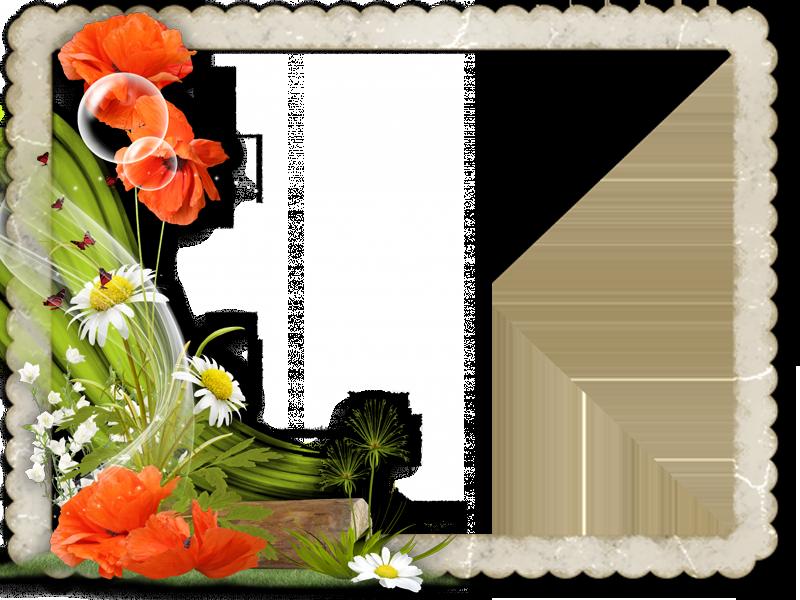 0_950e3_f8371469_L.png