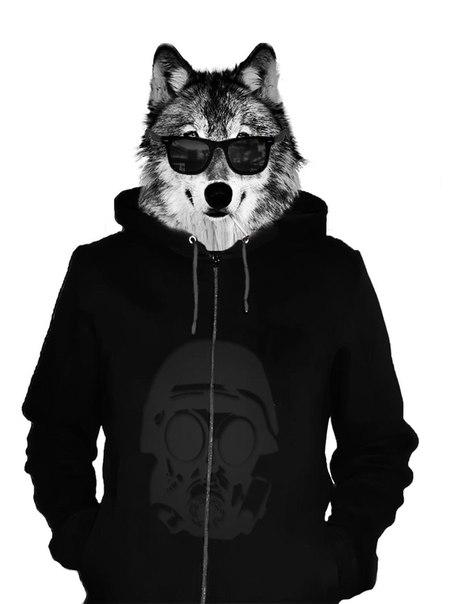 картинки человек с головой волка на аву место среди оживлённых
